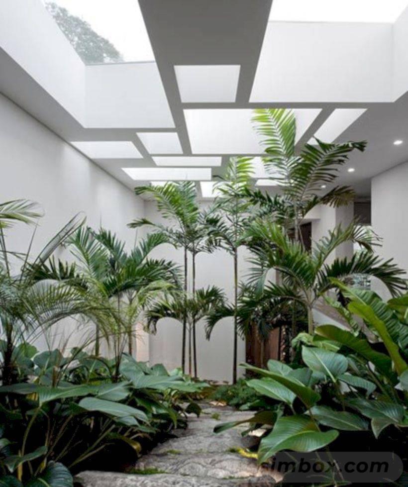 tropical garden ideas-738097826411873494