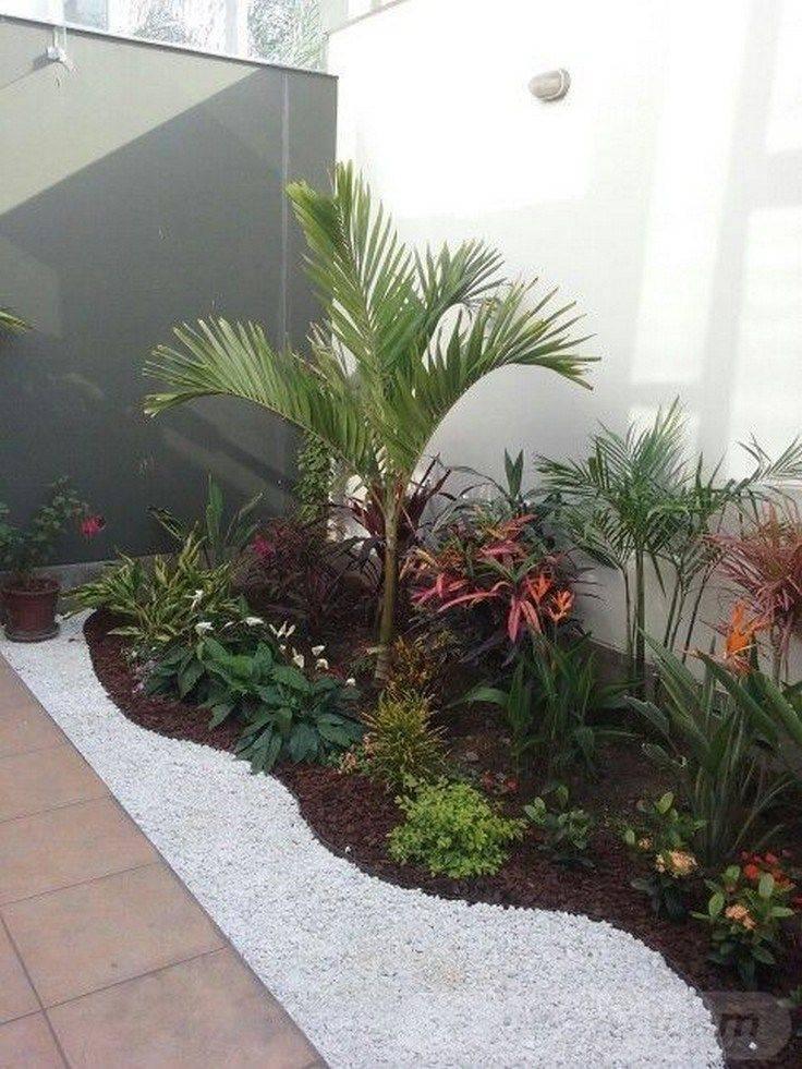 tropical garden ideas-620230179911827523