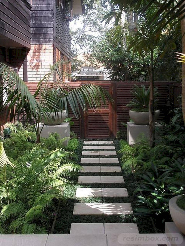 tropical garden ideas-742531057291876734