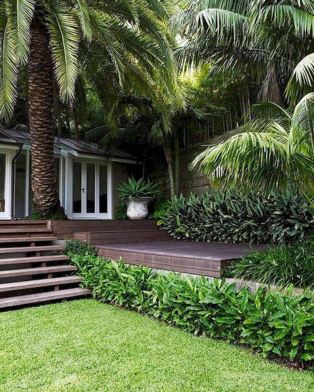 tropical garden ideas-844987948814301078