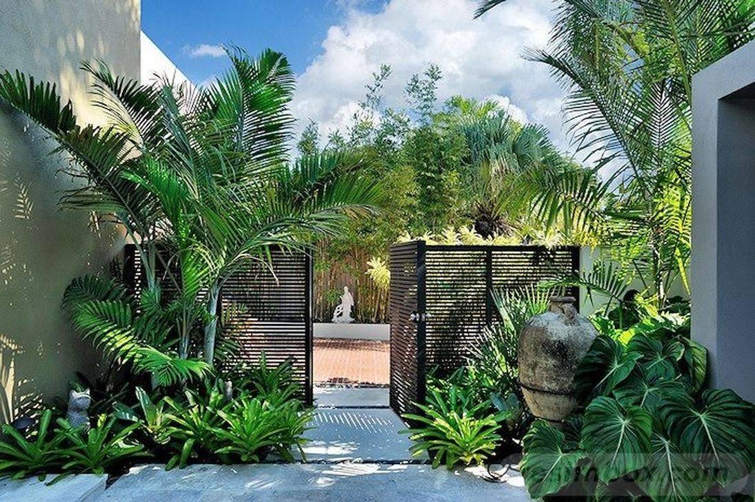 tropical garden ideas-241998179962761942