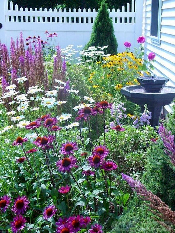 tropical garden ideas-757097387339006264