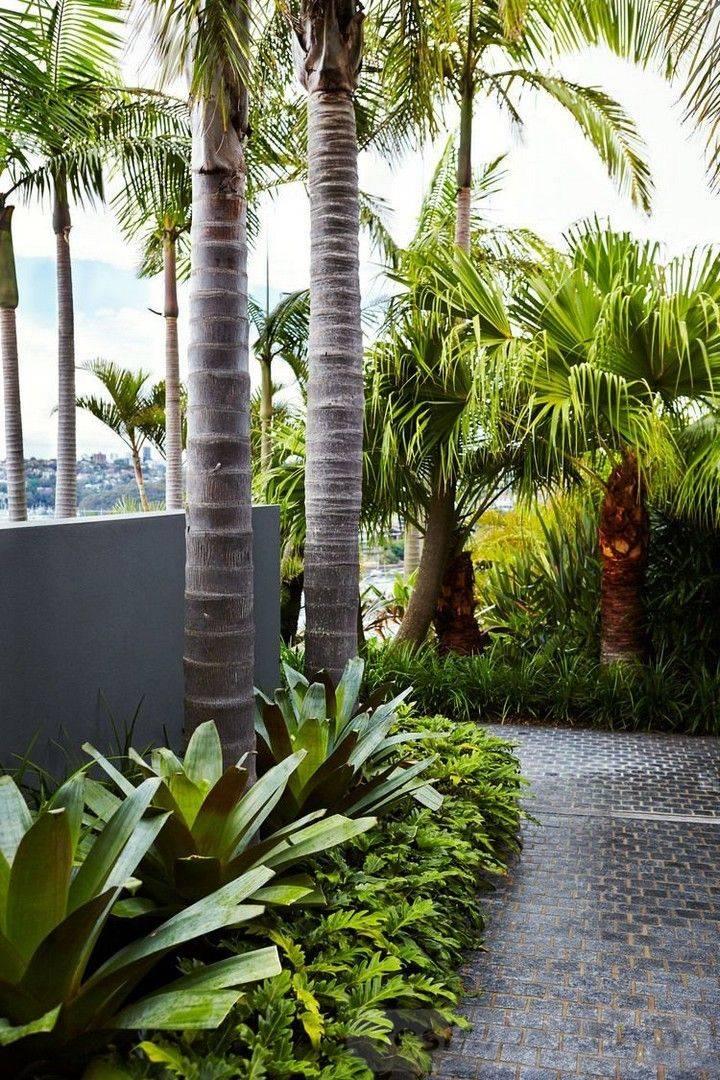 tropical garden ideas-812759063980450887