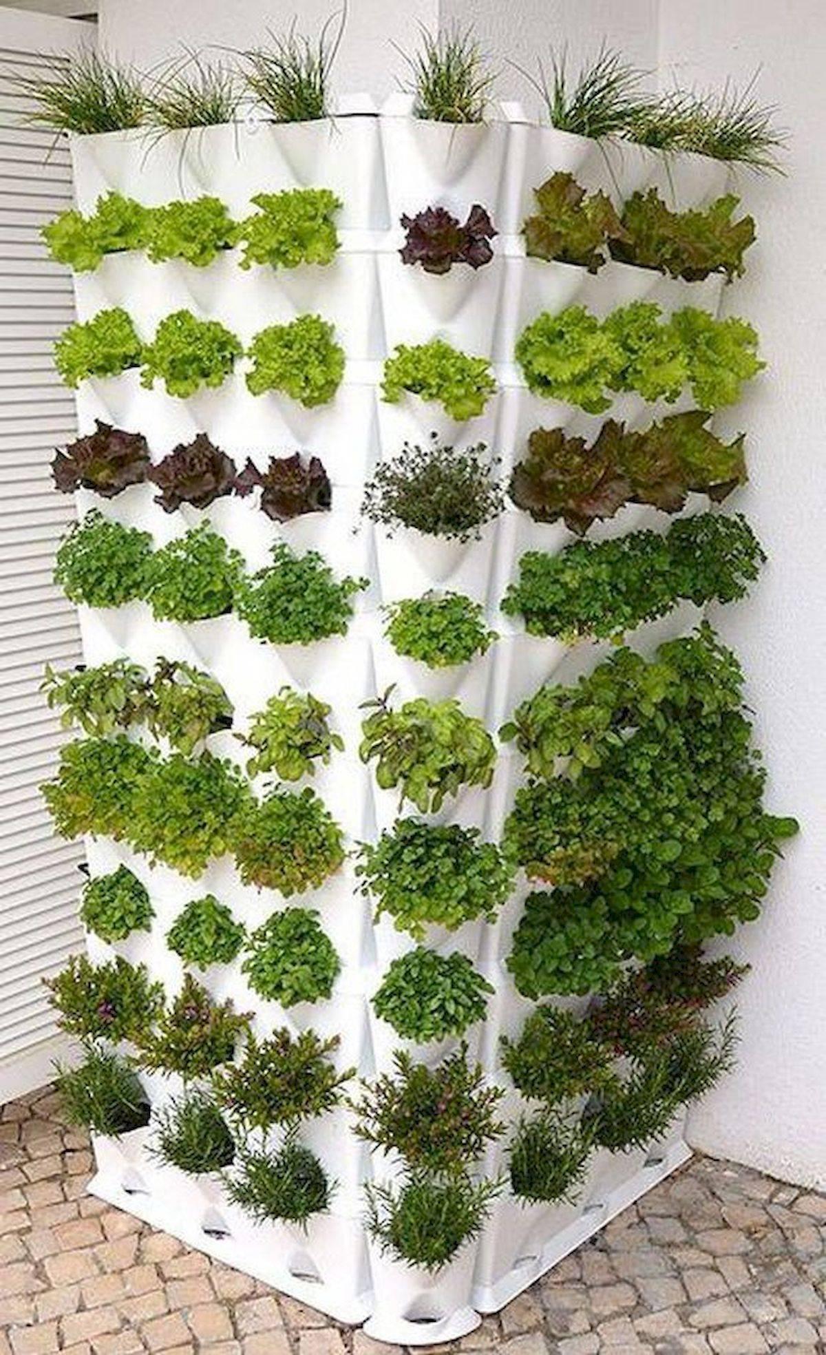 diy easy garden ideas-512988213804368272