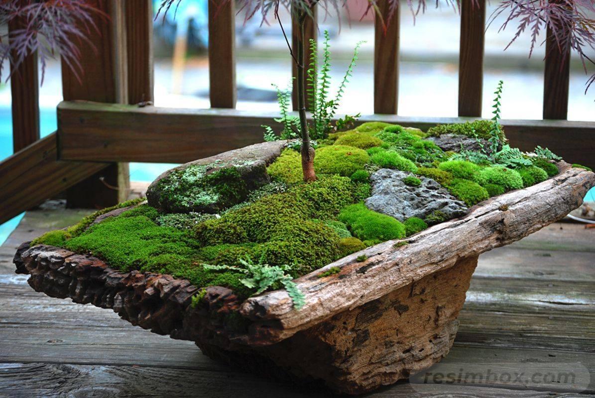 amazing garden ideas-835628905835914182