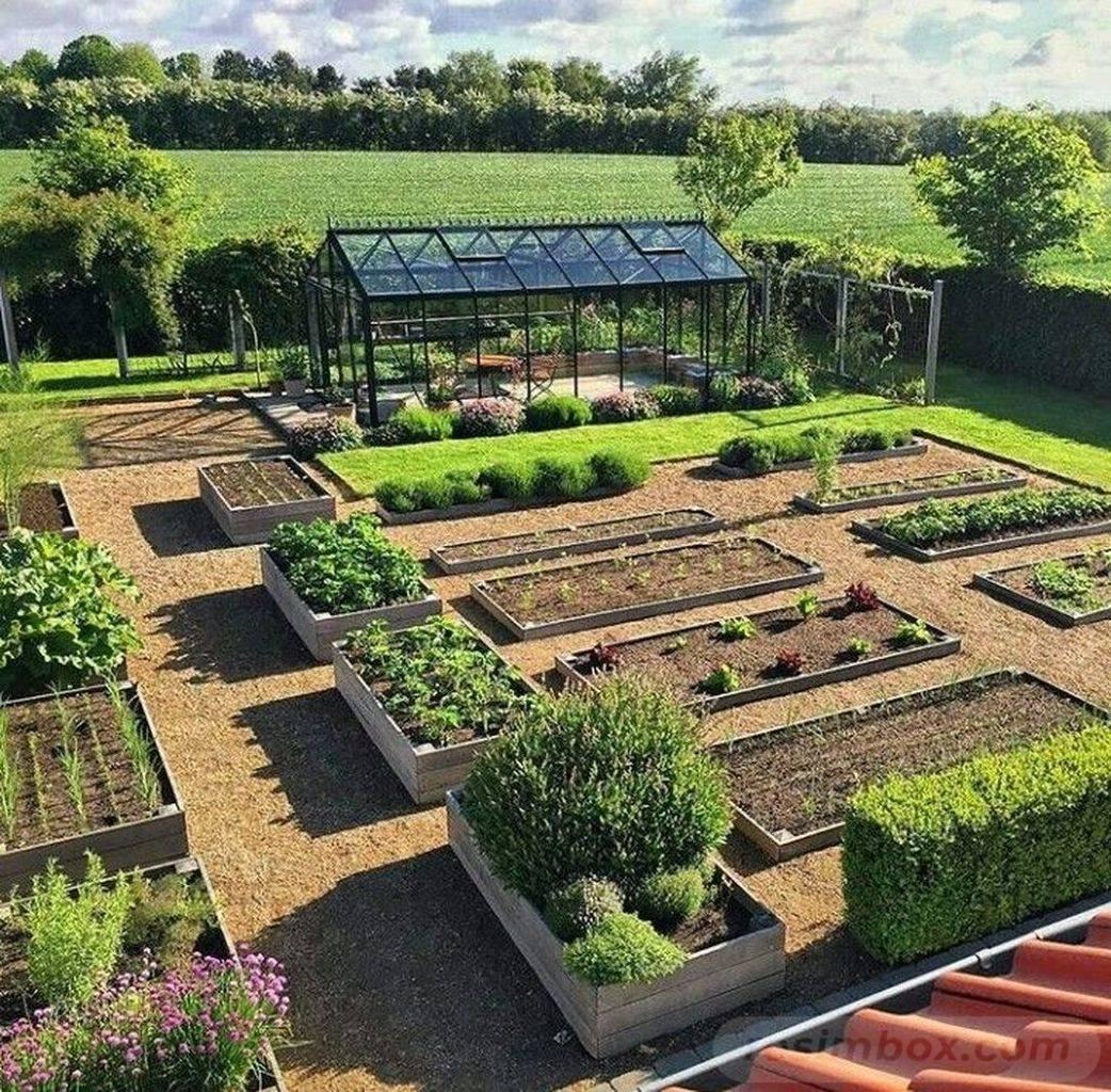 amazing garden ideas-797489046497605121