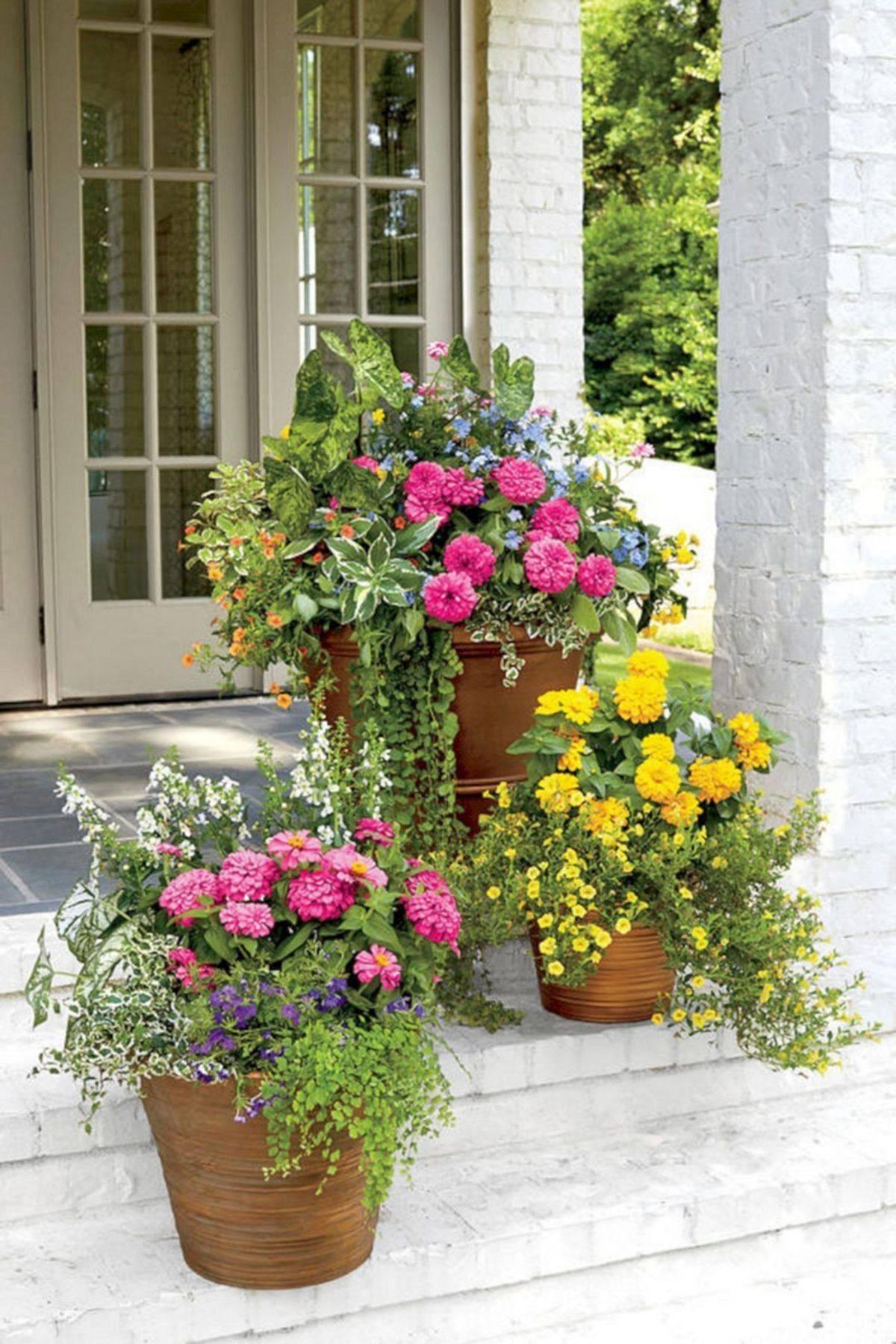 amazing garden ideas-597219600565431683