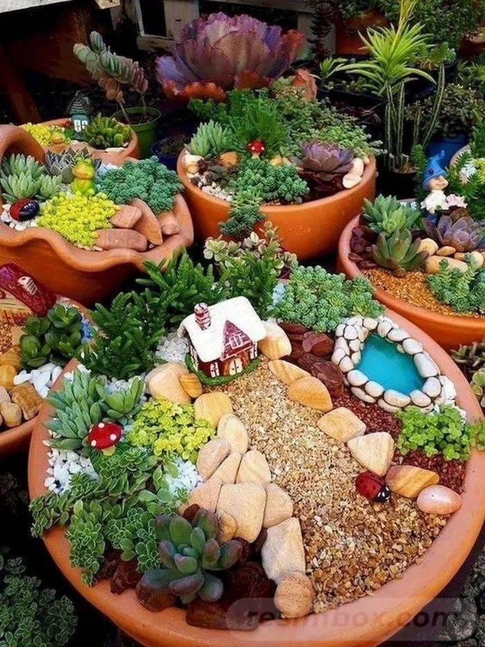 amazing garden ideas-746119863247760310