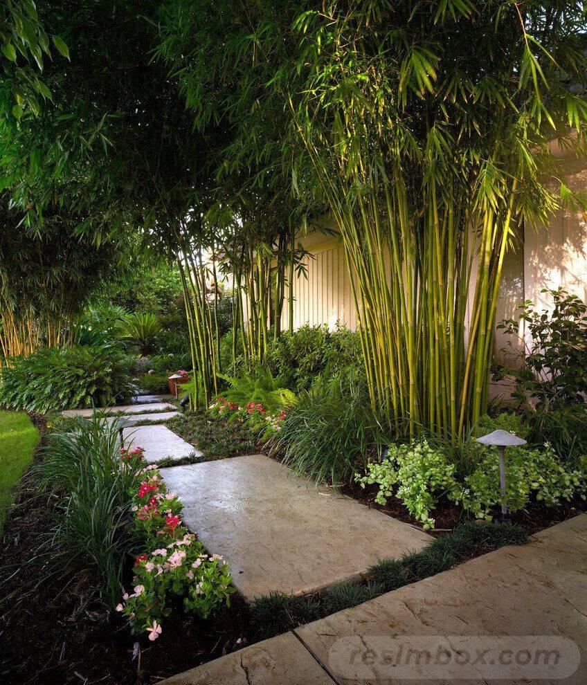 amazing garden ideas-824158800536951820