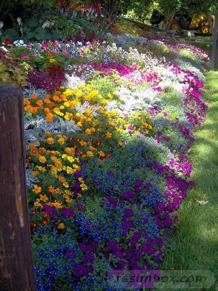 amazing garden ideas-663295851349666638