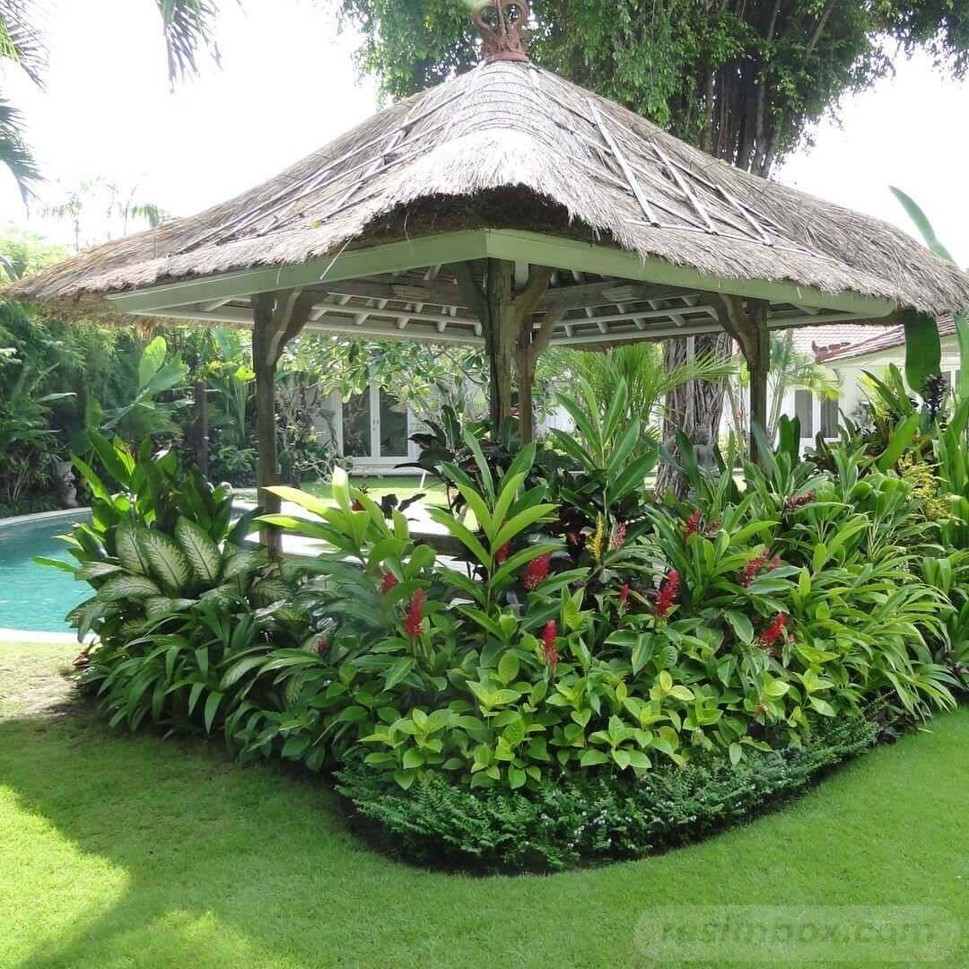 amazing garden ideas-824158800536918481