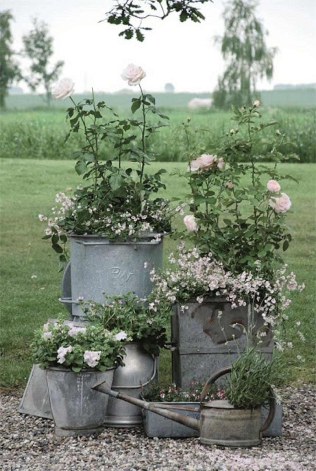 amazing garden ideas-835628905836597212
