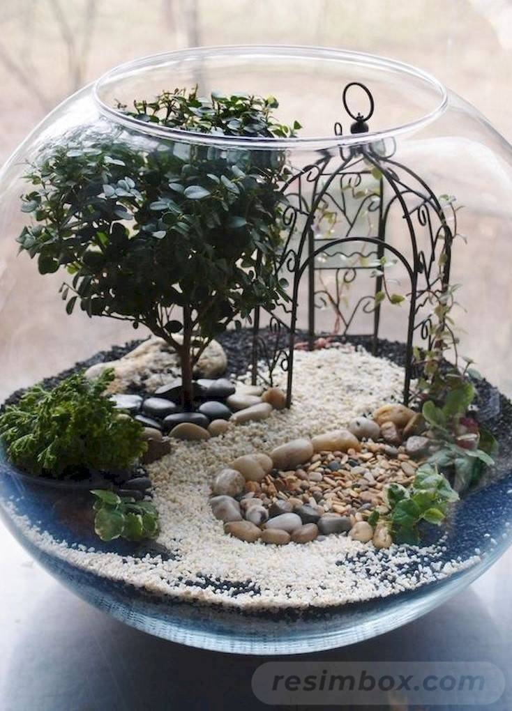 amazing garden ideas-806496245748881398