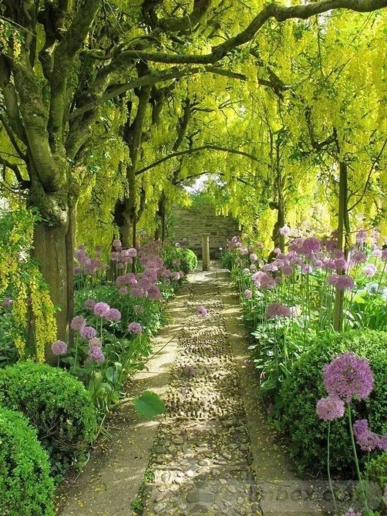 amazing garden ideas-620230179913538874