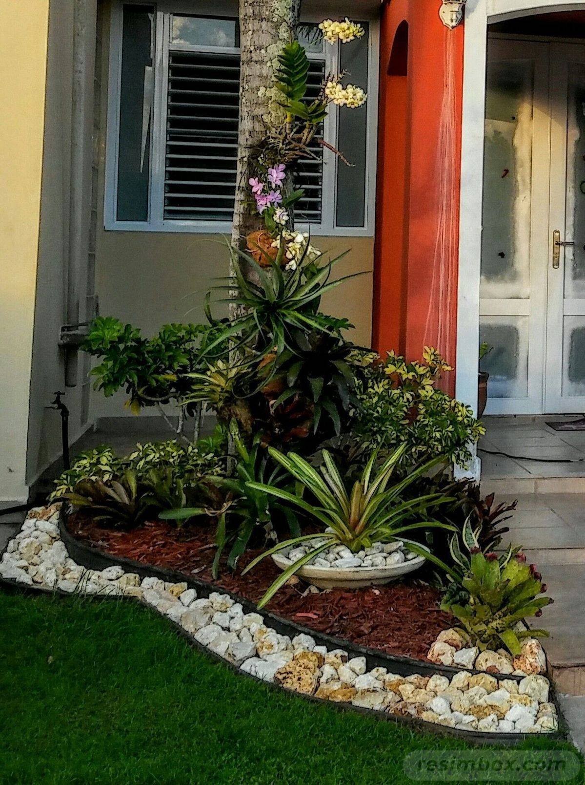 amazing garden ideas-836121487048399860