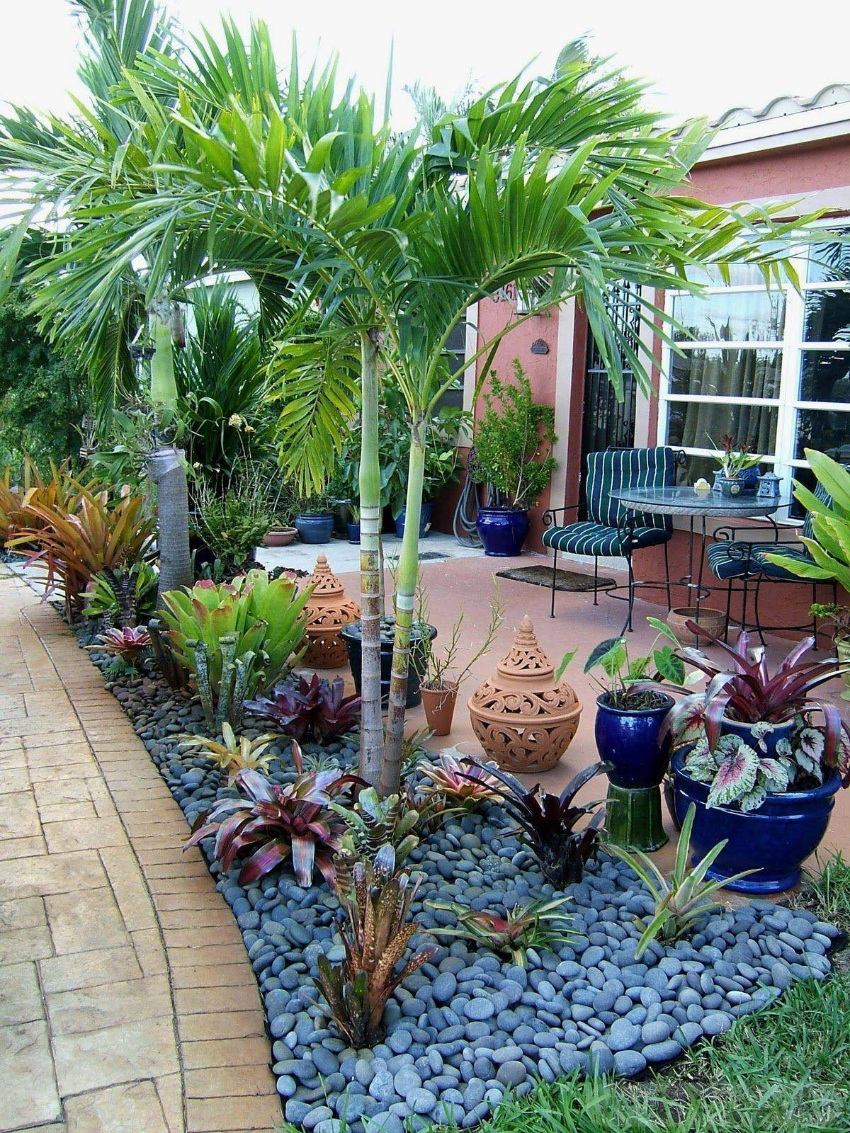 tropical garden ideas-772367404822362868