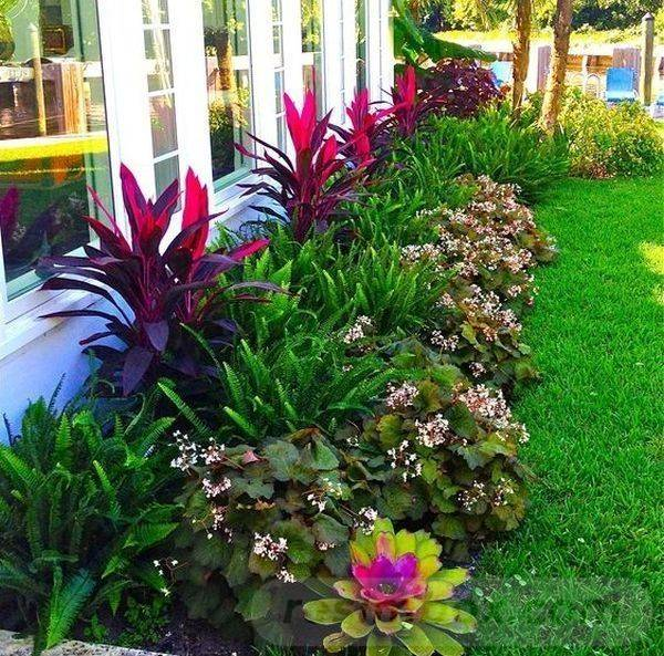 tropical garden ideas-807411039424259532