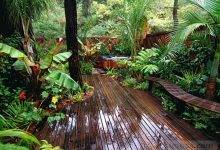 24 Best Awesome Tropical Garden Landscaping Ideas