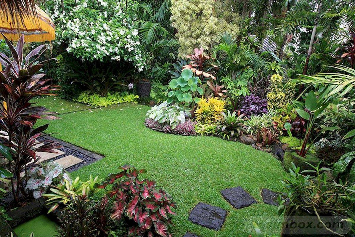 tropical garden ideas-744431013382889603