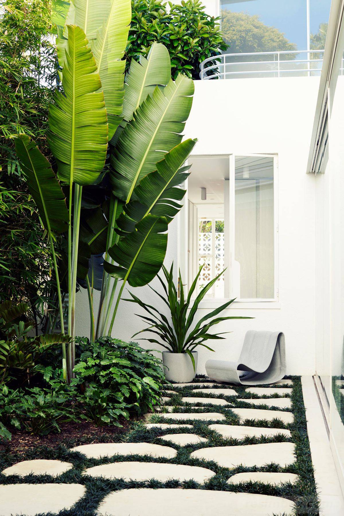 tropical garden ideas-97601516911274932