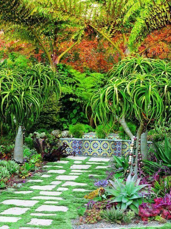 tropical garden ideas-807411039424253177