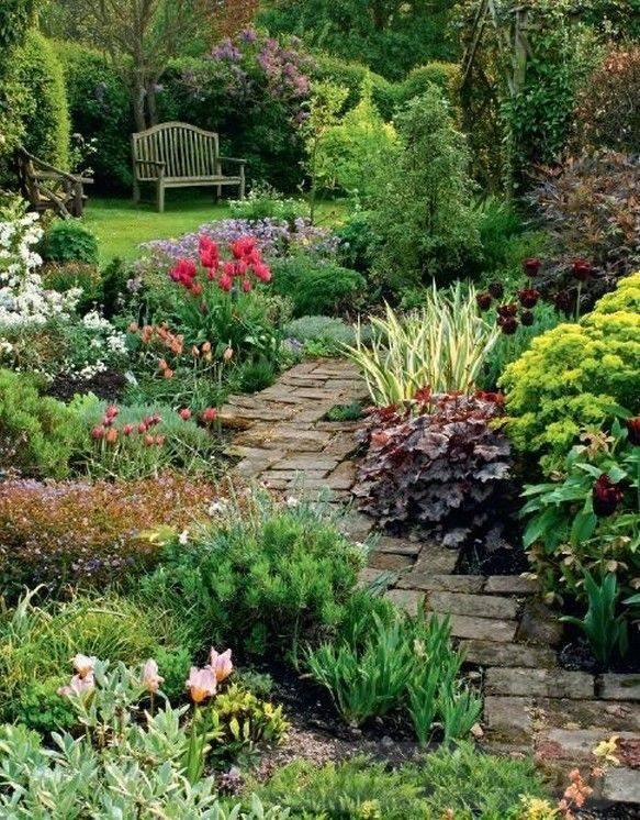 tropical garden ideas-671599363163256894