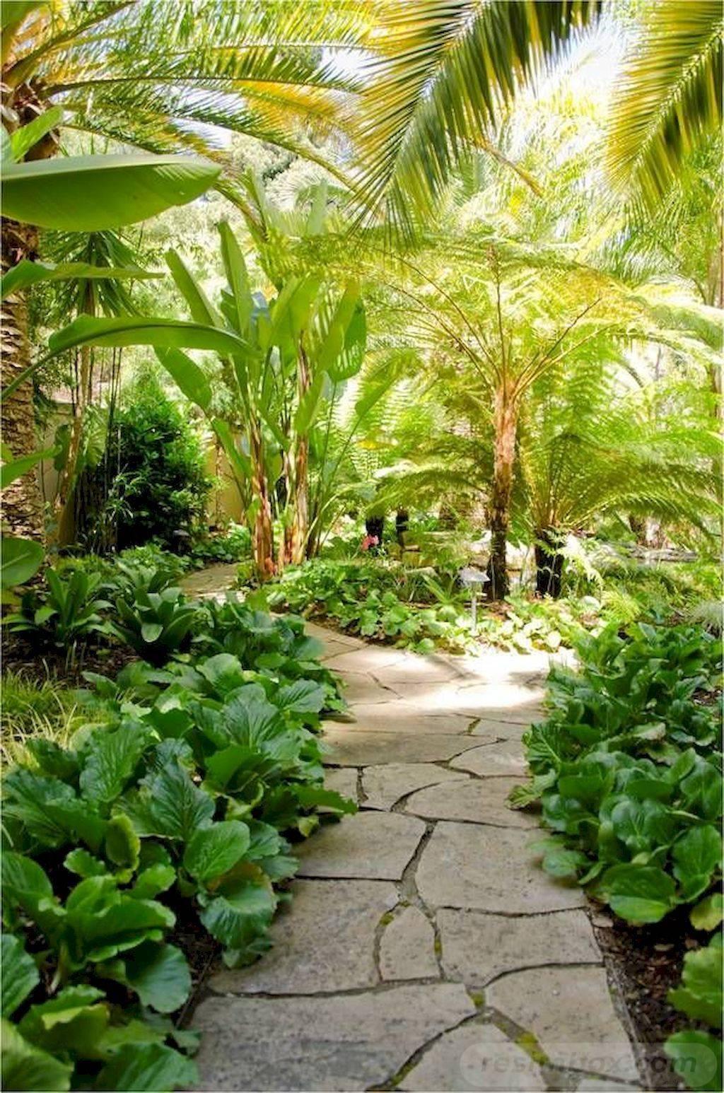 tropical garden ideas-625367098237790986