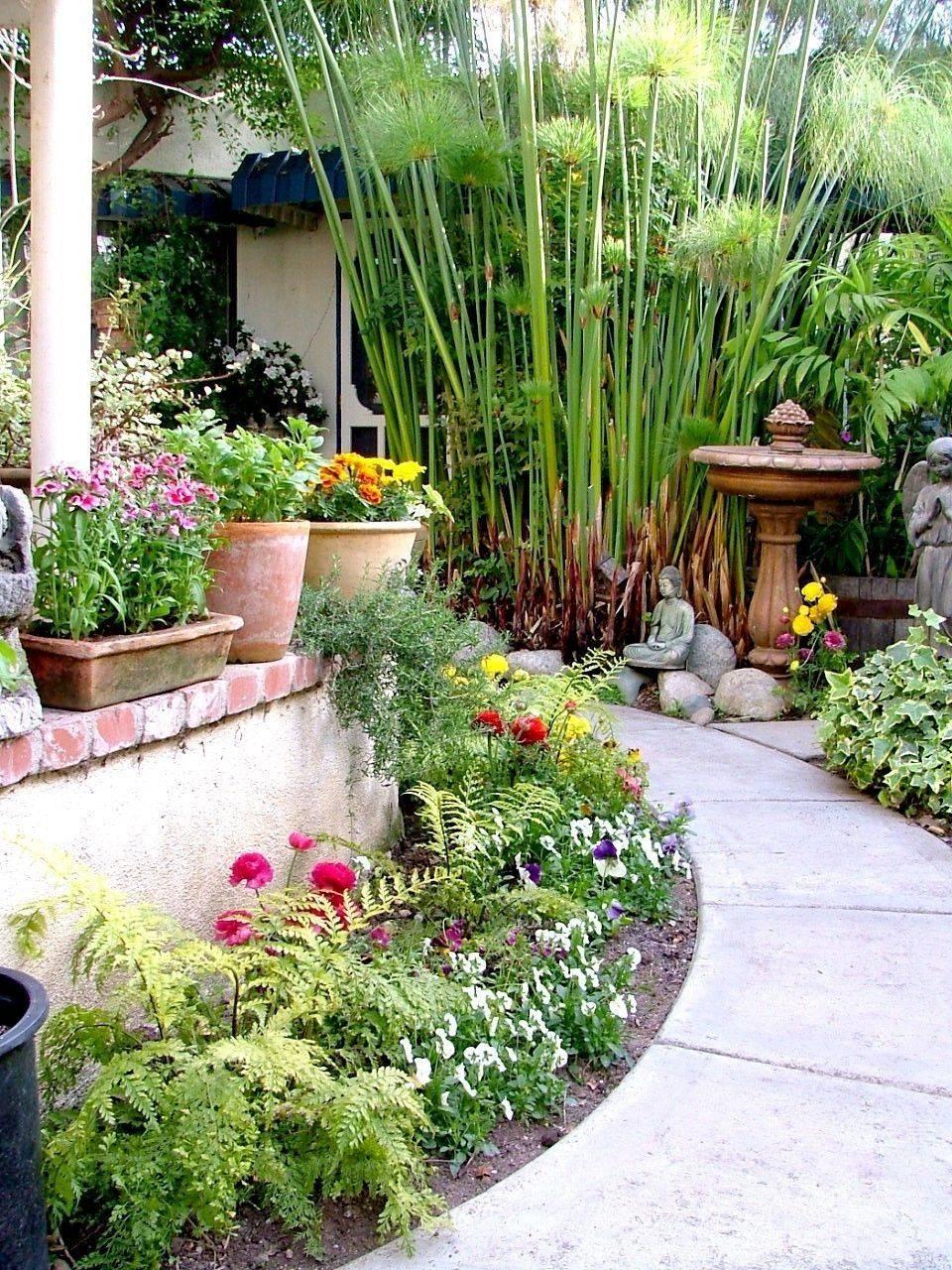 tropical garden ideas-733664595526179010