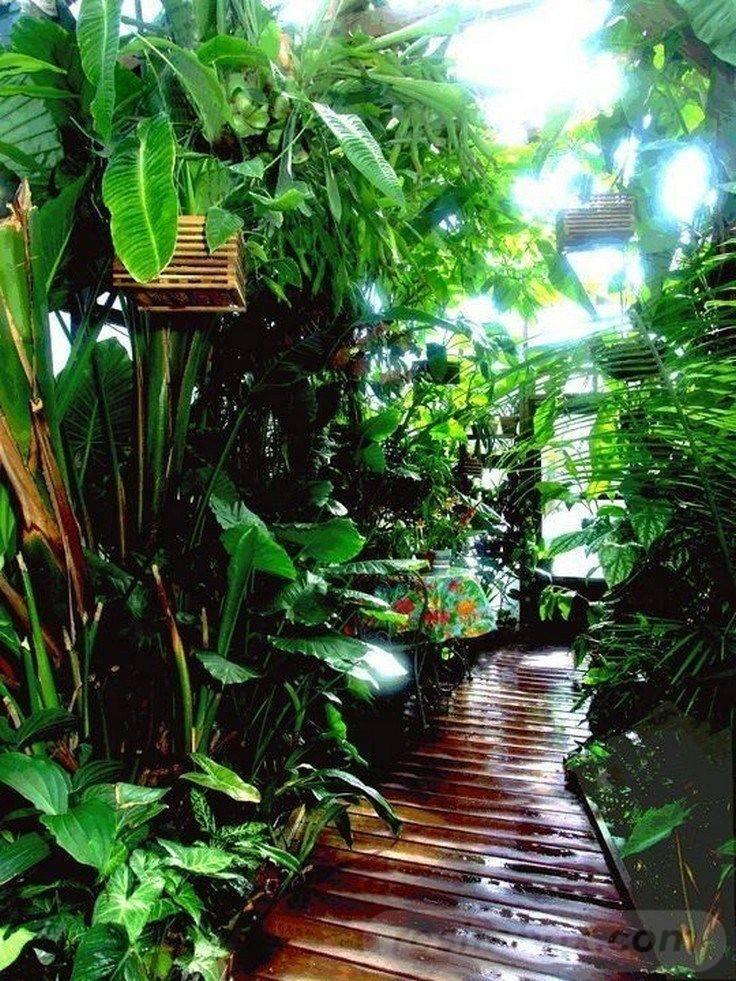 tropical garden ideas-620230179912161773
