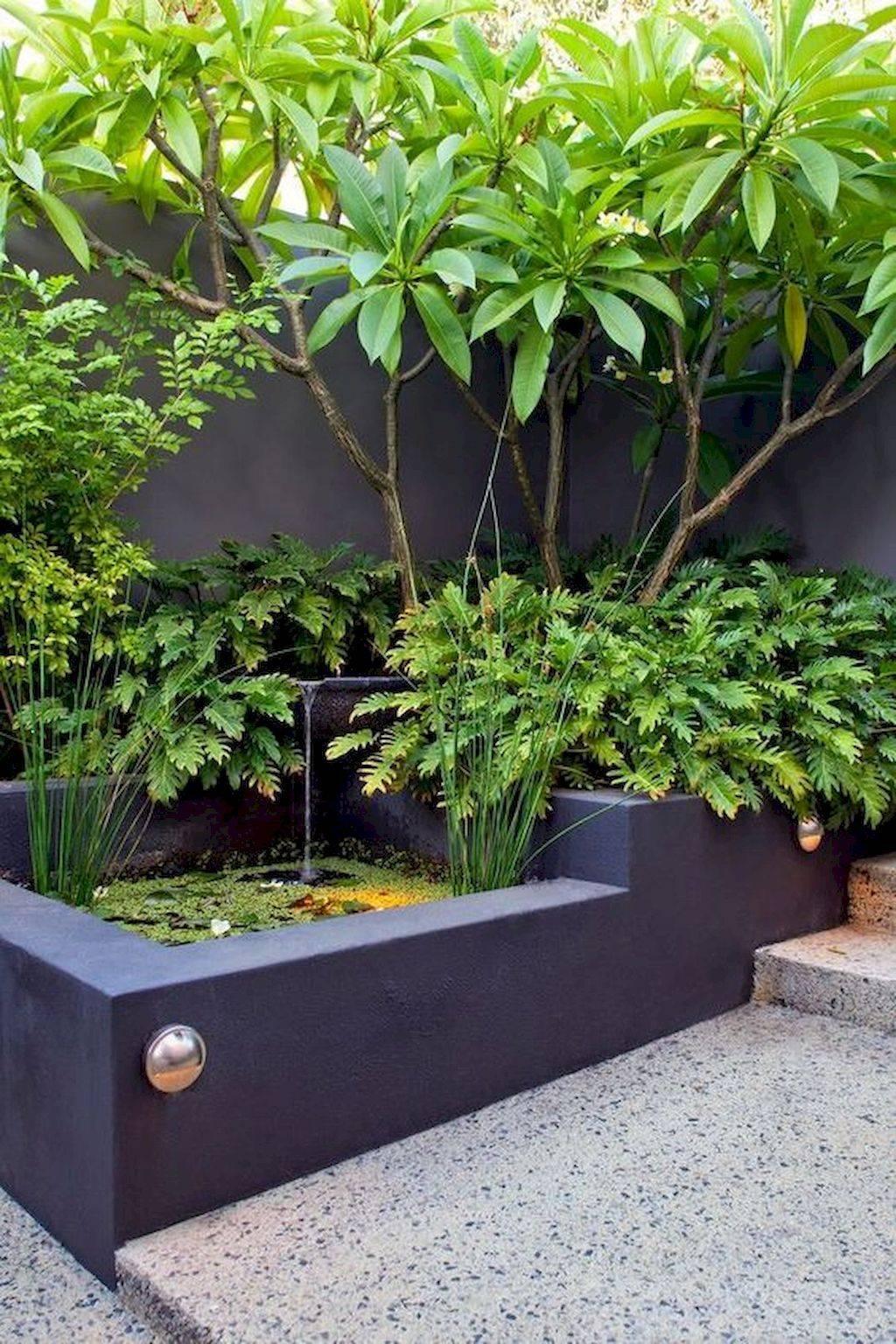 tropical garden ideas-687080486881395961