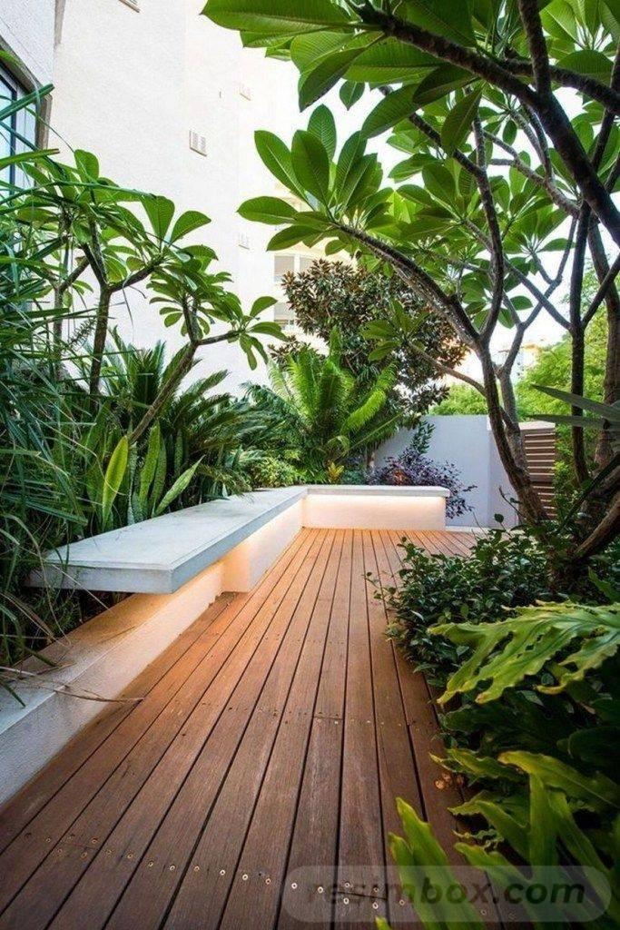 tropical garden ideas-620230179912909923