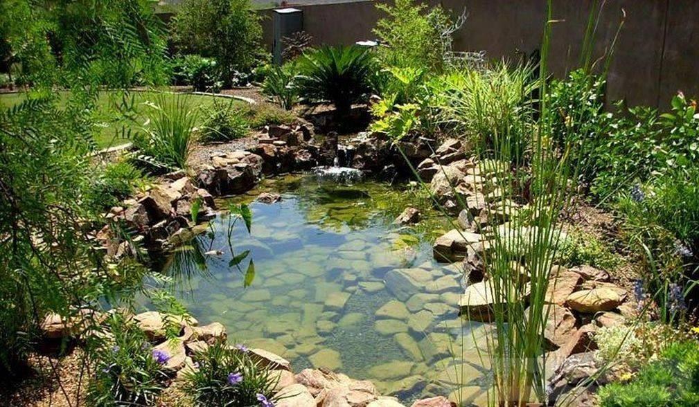 tropical garden ideas-694258098785116141