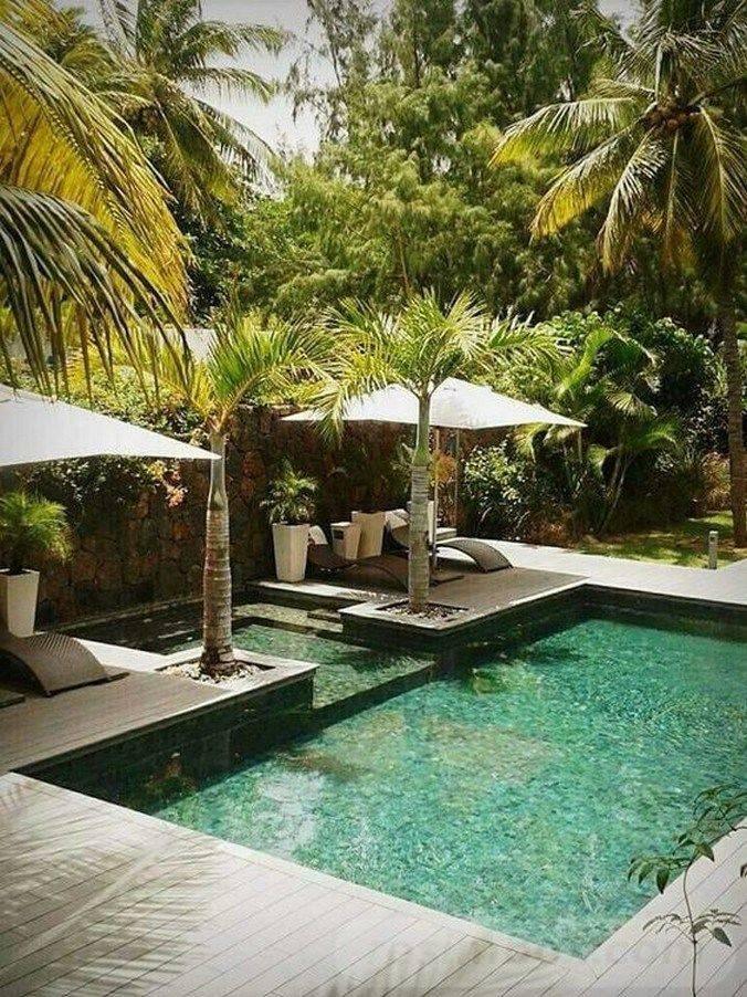 tropical garden ideas-839780661747552419