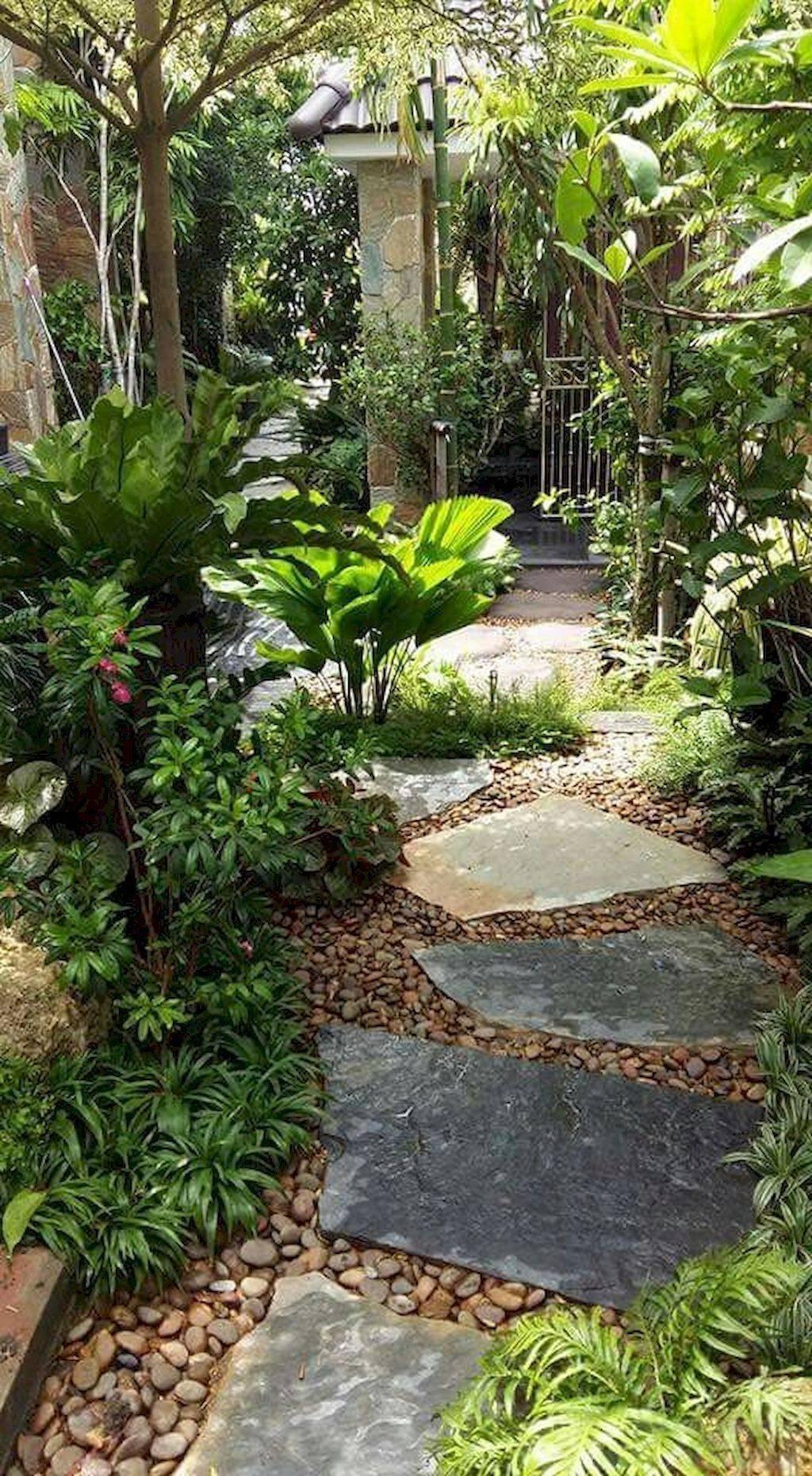 tropical garden ideas-736057132831075784