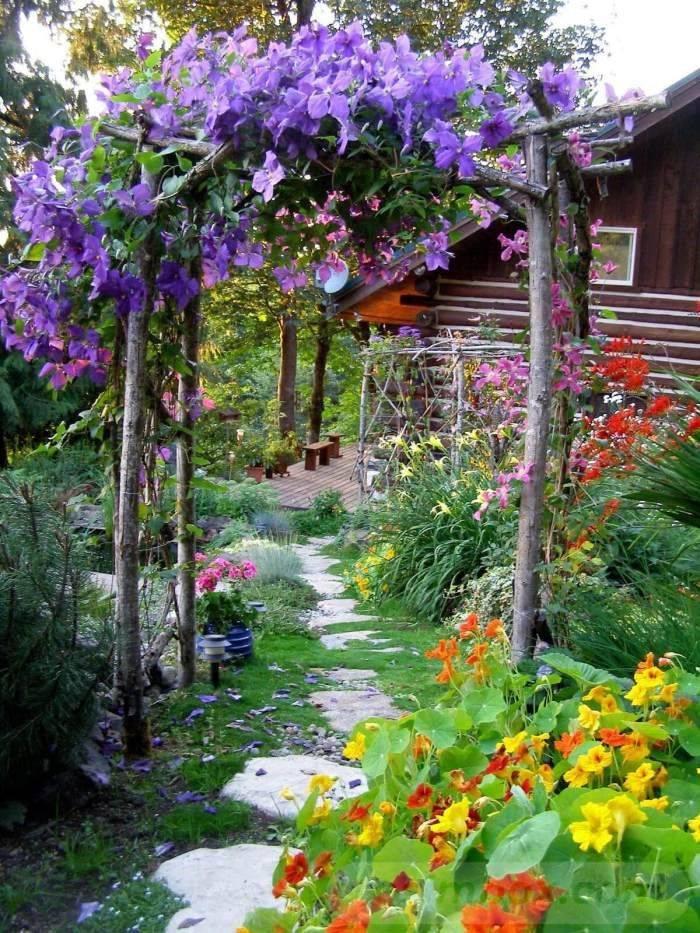 tropical garden ideas-192880796528172683