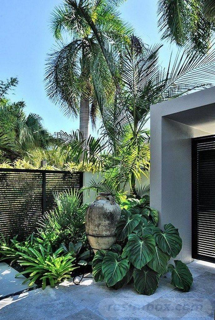tropical garden ideas-620230179912161810