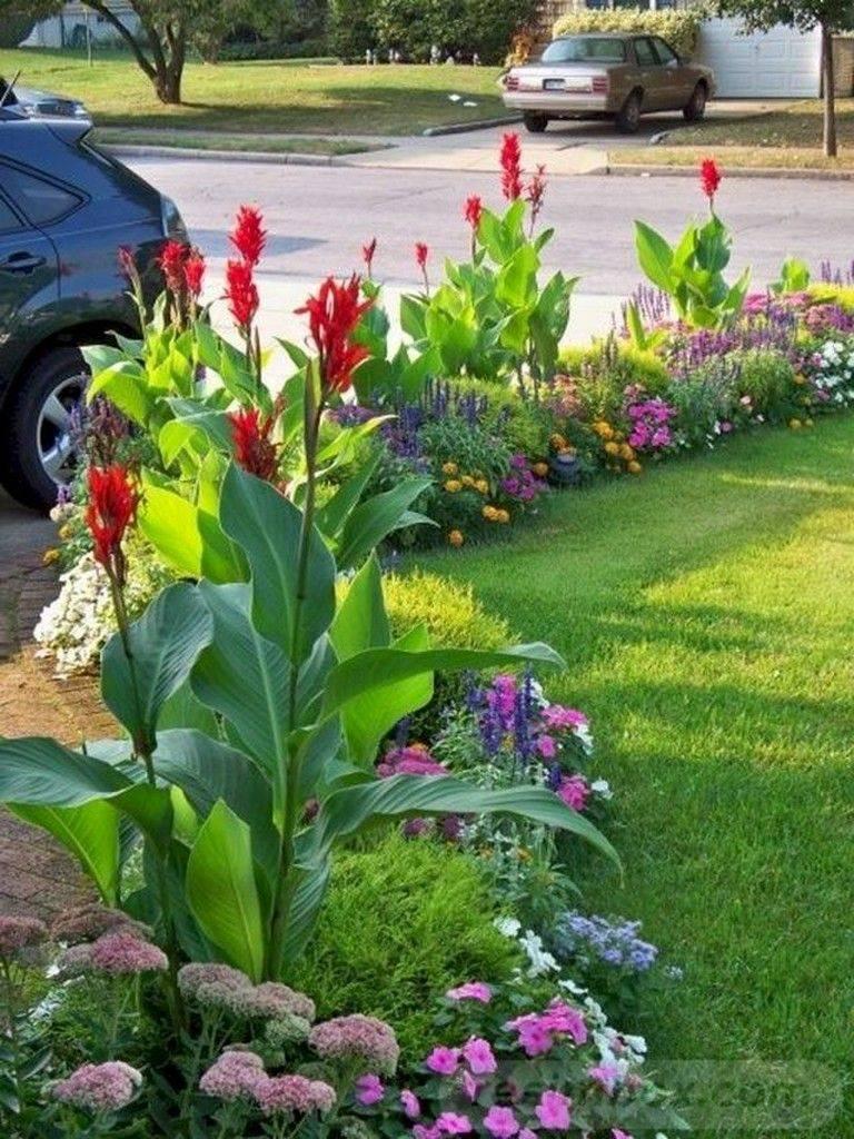 tropical garden ideas-758856605939250518