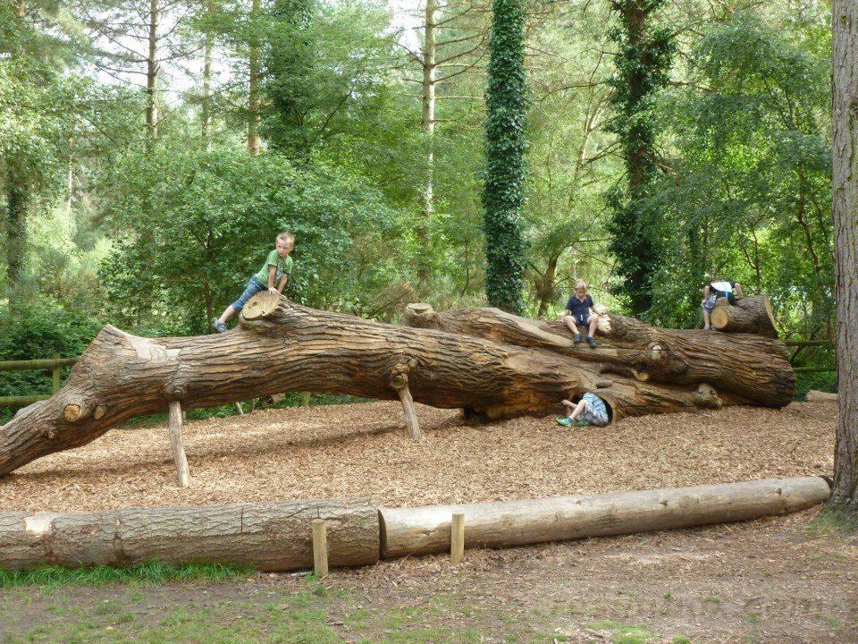 natural playground ideas-221169031672858132