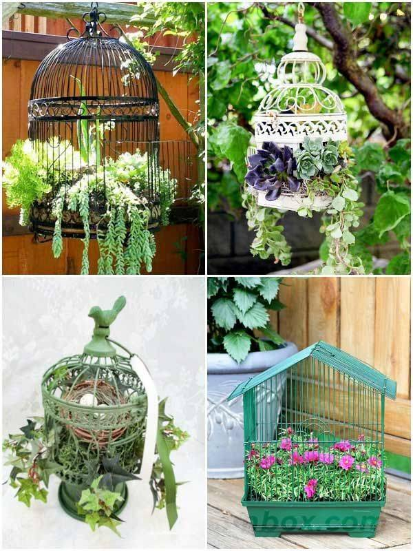 creative garden ideas-361554676333849147
