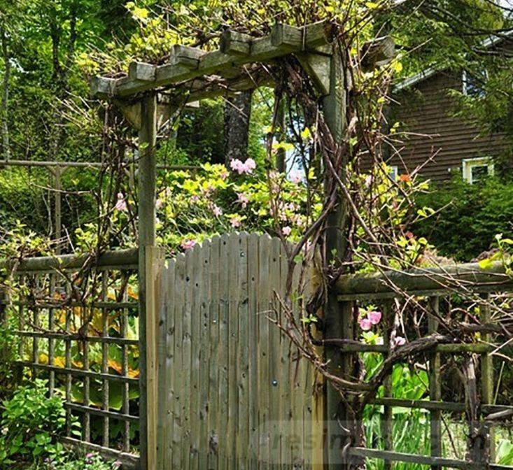 creative garden ideas-357614026657577050