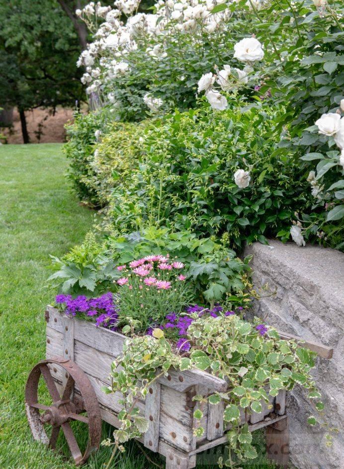 creative garden ideas-704672672927693337