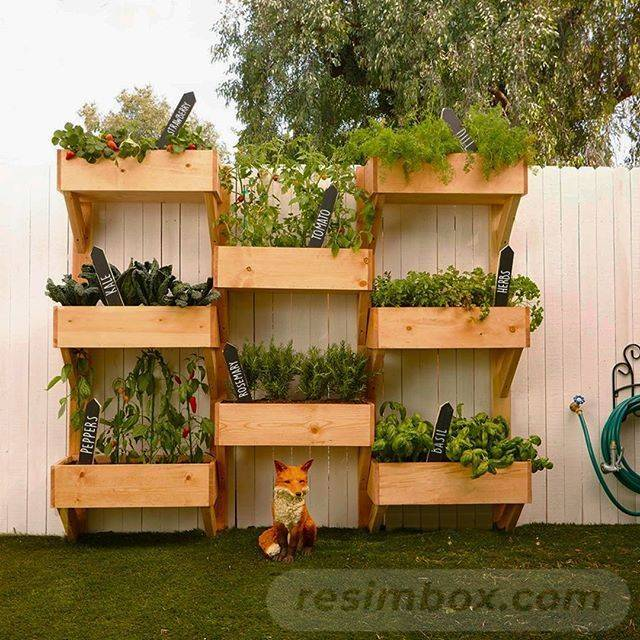diy easy garden ideas-534239574545603903