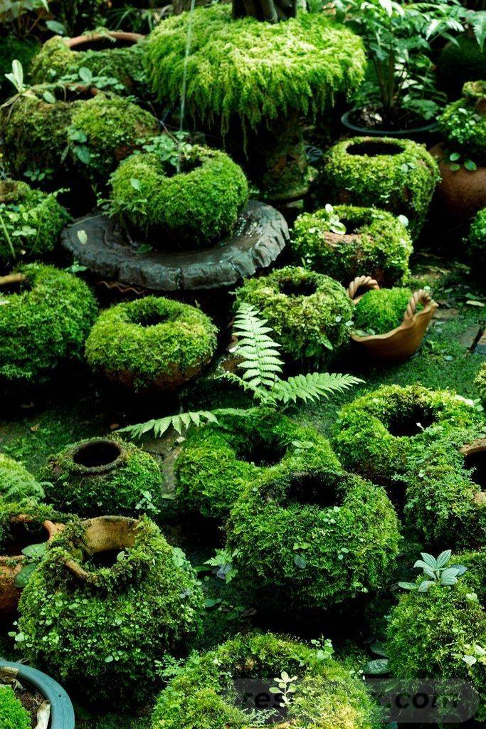 diy easy garden ideas-663084745116974013