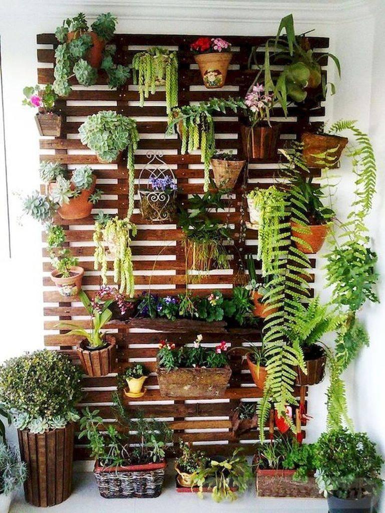 diy garden easy-663084745116953910