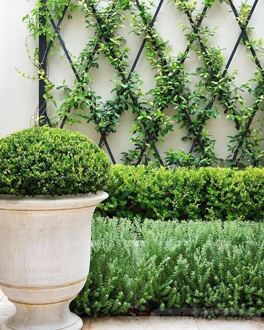 diy garden easy-812759063979889839