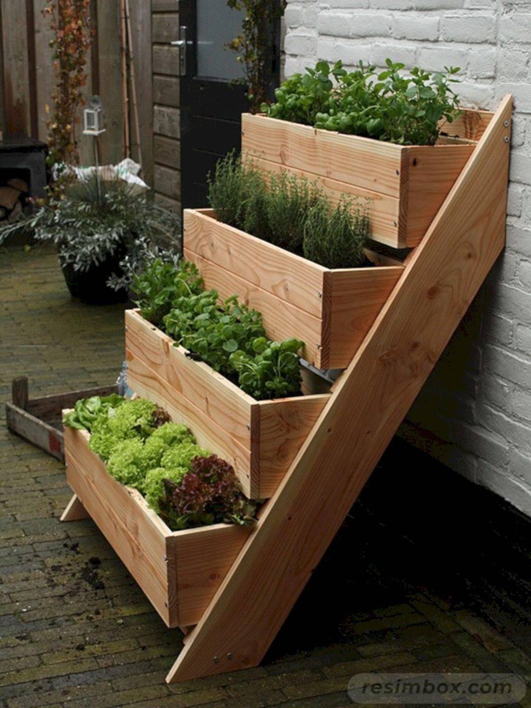 diy garden easy-337840409546411383