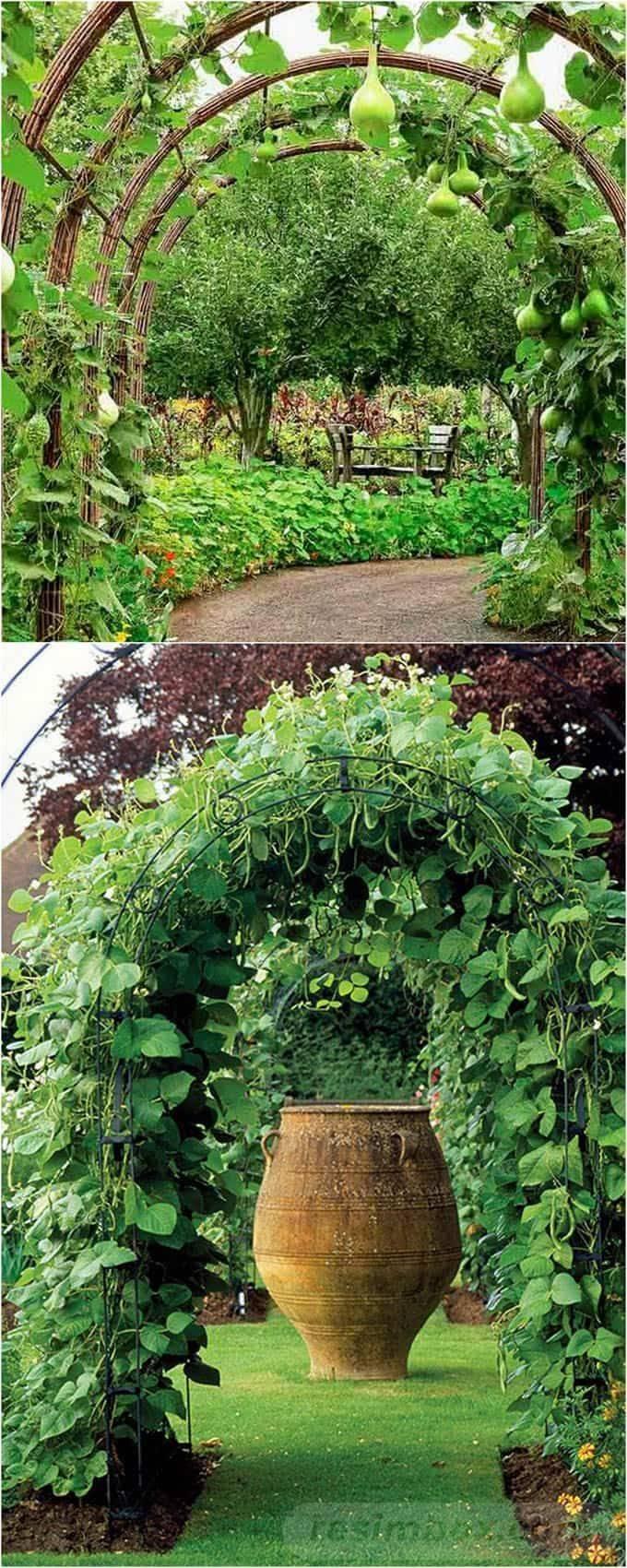 diy garden easy-596656650603795136