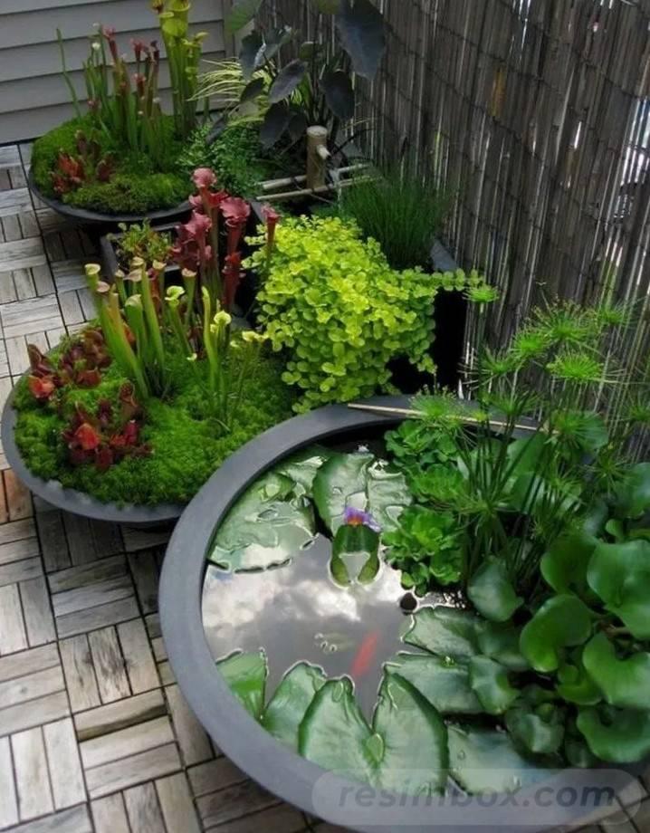 diy garden easy-755901118688372454