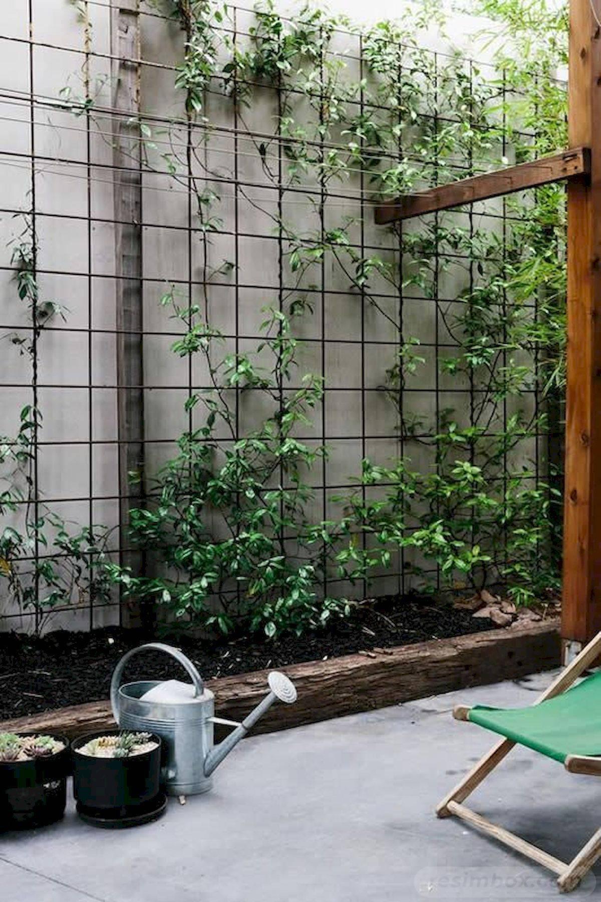 diy garden easy-692498880183645501