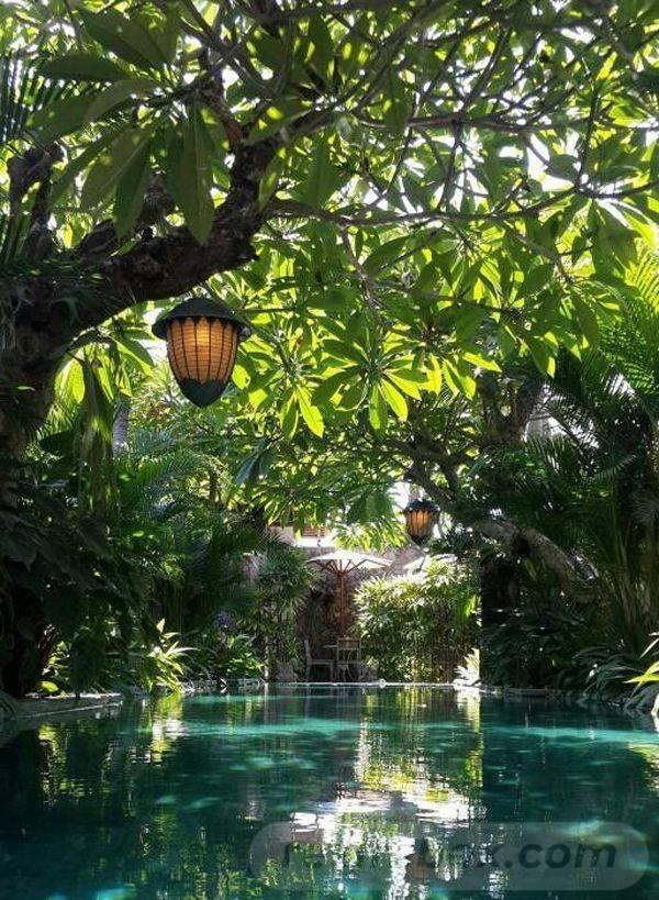 tropical garden ideas-652740539718726643